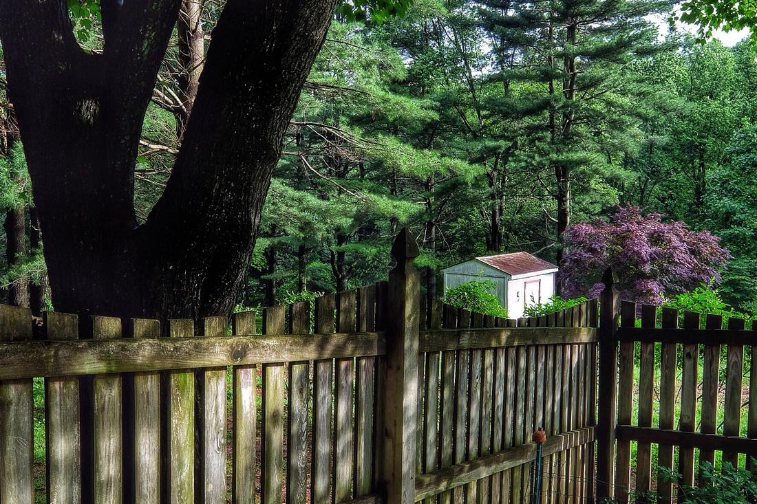 Fence Corner View Redux