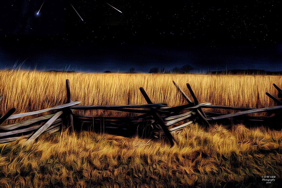 Wheatfield Meteor Shower
